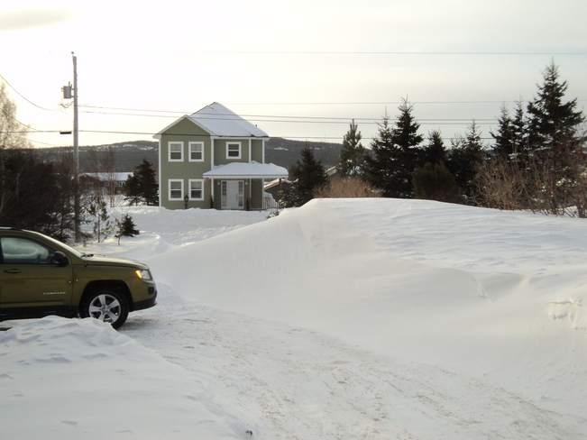 The Day after the great storm on the Avalon Carbonear, Newfoundland and Labrador Canada