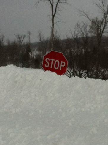 Stop ... if you can see it! Feversham, Ontario Canada