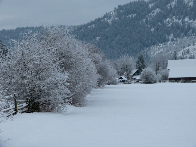 winter Revelstoke, British Columbia Canada