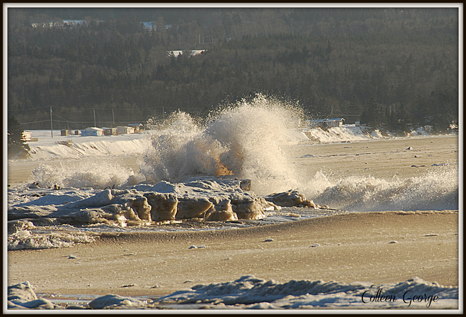 Wild Winter Ocean Canning, Nova Scotia Canada