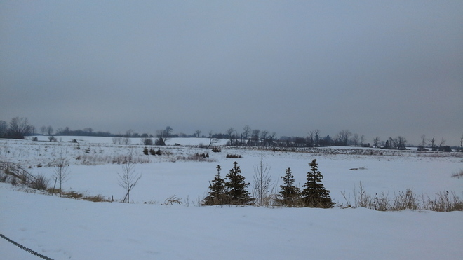 Trees And Ponds Ice And Snow Bowmanville, Ontario Canada