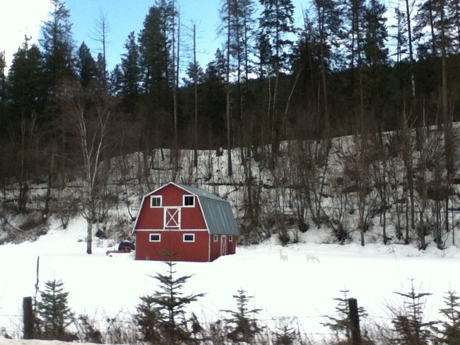 red barn nestled in snow South Vernon, British Columbia Canada