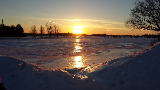 Sunset on Crusted Snow Ottawa, Ontario Canada