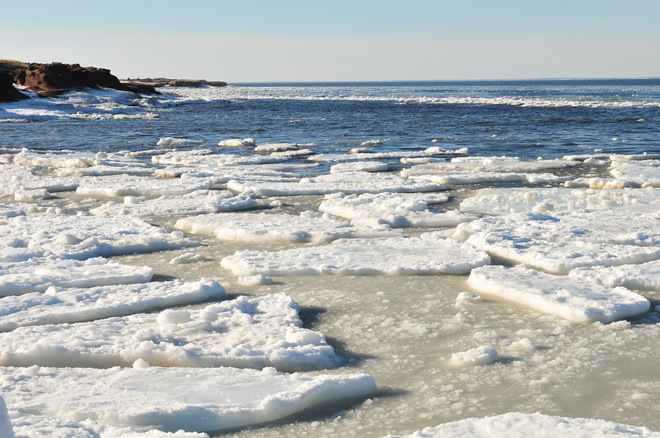 Floating ice. Cap-Pele, New Brunswick Canada
