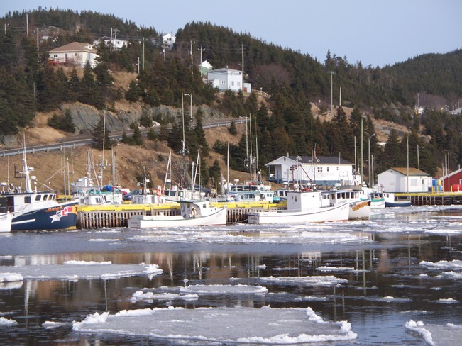 Boats at Jerseyside, N.L. Placentia, Newfoundland and Labrador Canada