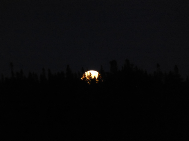 Moon Rise Birchy Bay, Newfoundland and Labrador Canada