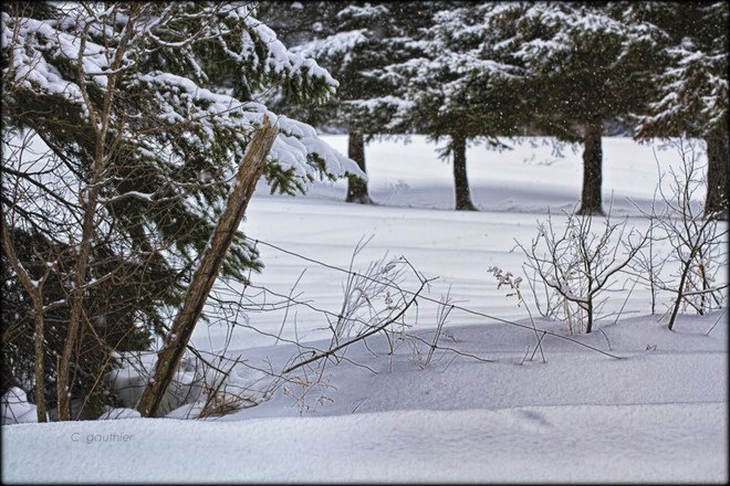 Lots of snow this winter. Magnetawan, Ontario Canada