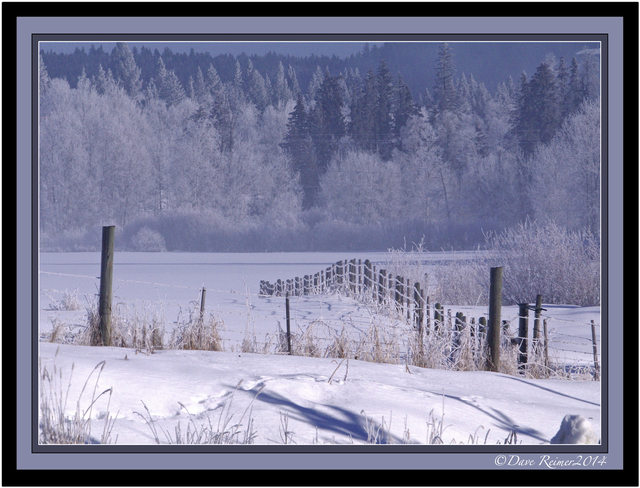 Frosty morning One Hundred Mile House, British Columbia Canada