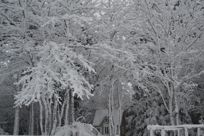 Winter Wonderland - Hammonds Plains, NS Halifax, Nova Scotia Canada