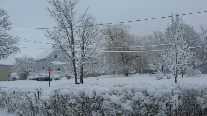 Winter Wonderland Truro, Nova Scotia Canada