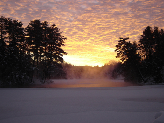 Christmas Morning -30c Huntsville, Ontario Canada