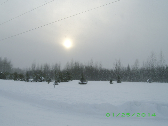 Snow Covered Sun Kenabeek, Ontario Canada