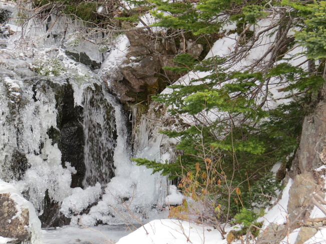running Brook with ice Marystown, Newfoundland and Labrador Canada