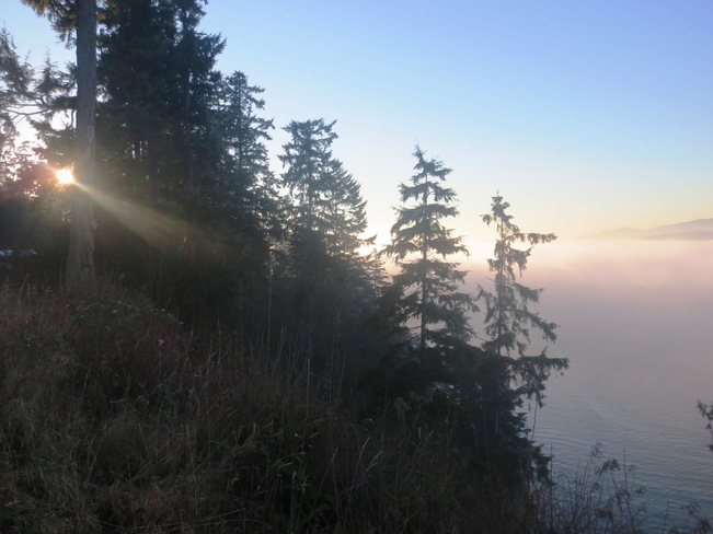 Sun peaking through fog at Prospect Point Vancouver, British Columbia Canada