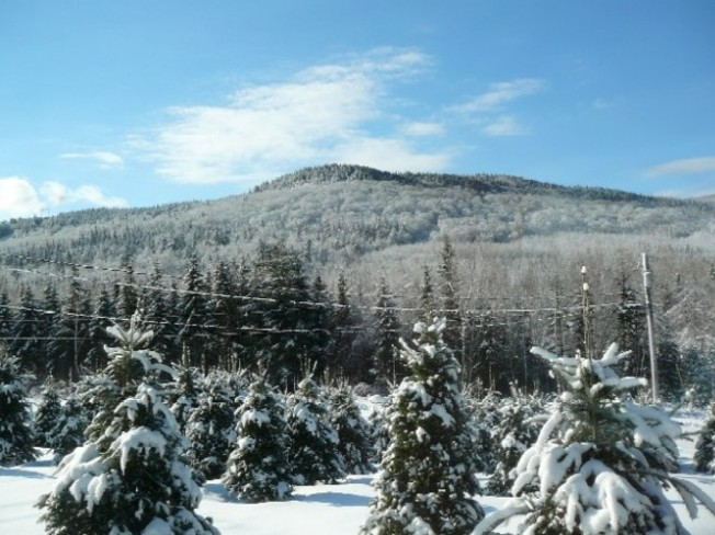 Snow on the mountain at Central Greenwich Browns Flat, New Brunswick Canada