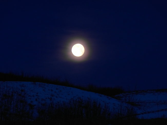moonlight over nose hill park. Calgary, Alberta Canada
