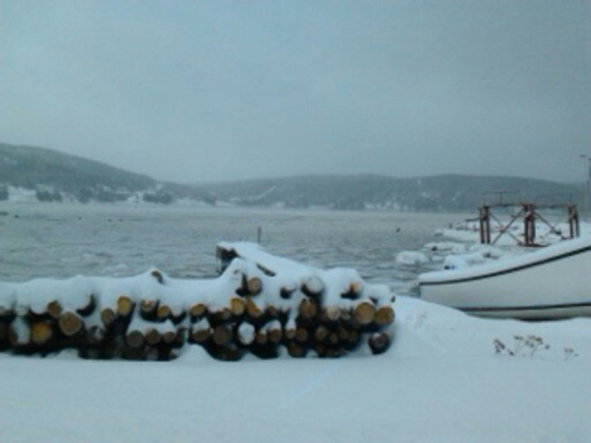 Look at the Harbour Heart's Content, Newfoundland and Labrador Canada