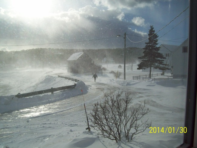 drifting snow in twillingate Twillingate, Newfoundland and Labrador Canada