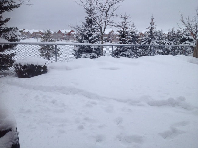 alot of snow Markham, Ontario Canada