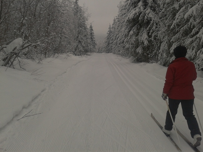 Hallis Lake cross country skiing Quesnel, British Columbia Canada