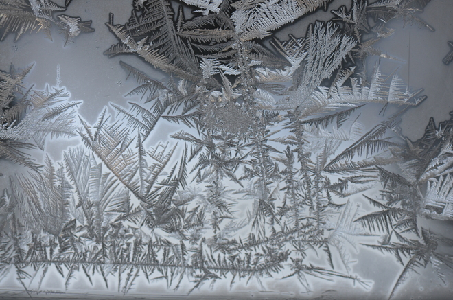 Frost art on the window Calgary, Alberta Canada