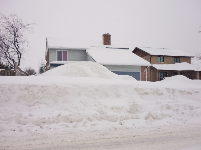 Houses hiding behind the Snow. Orillia, Ontario Canada