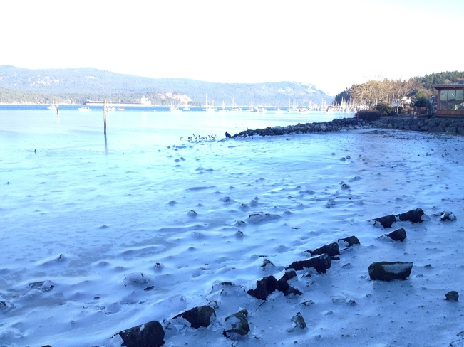 frozen beach Cowichan Bay, British Columbia Canada