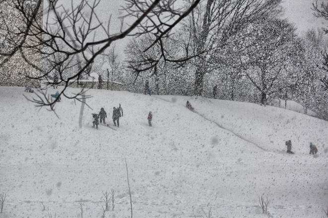 kids sledding in snow Forest, Ontario Canada