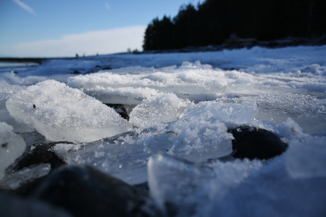 Frozen Sea Campbell River, British Columbia Canada