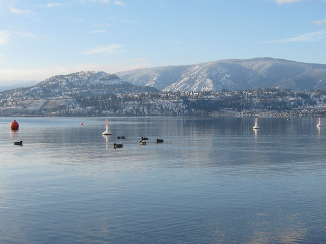 Frozen lake in over 20 yrs Kelowna, British Columbia Canada