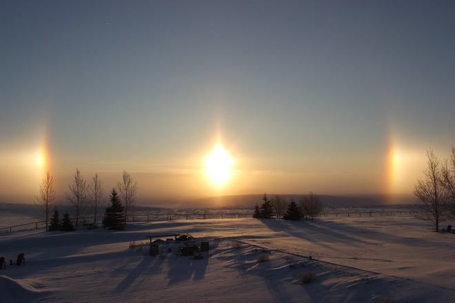 Good Morning Sunshine Rocky View, Alberta Canada