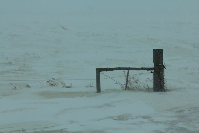 Still Winter Dalmeny, Saskatchewan Canada