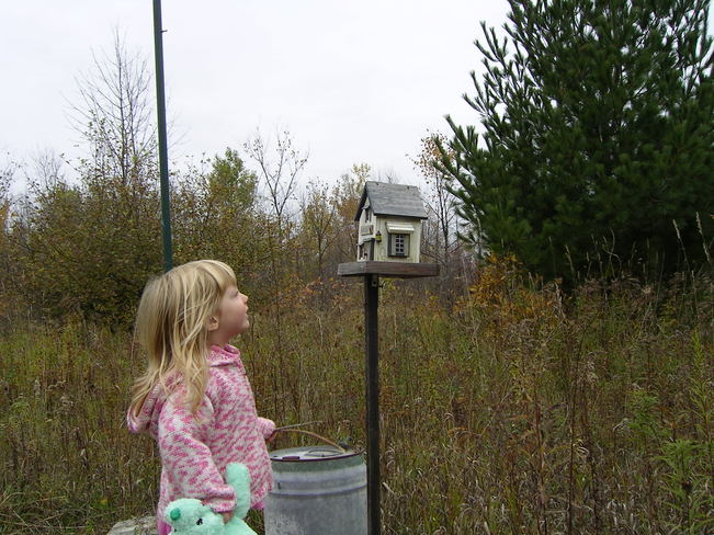 checking the bird house in the fall Manotick, Ontario Canada