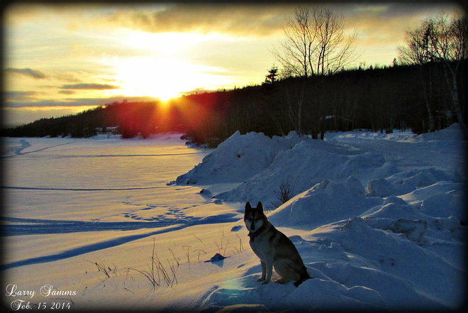 """Leka And Sunset"" Springdale, Newfoundland and Labrador Canada"