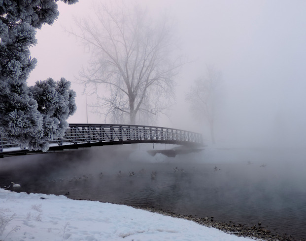 Bridge Over Misty Waters Sarnia, Ontario Canada