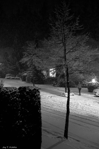 SNOW ! Coquitlam, British Columbia Canada