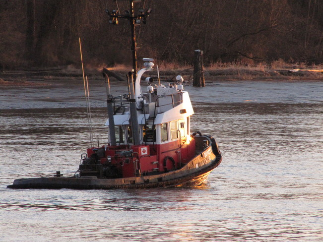 Tug on the Fraser River Port Coquitlam, British Columbia Canada