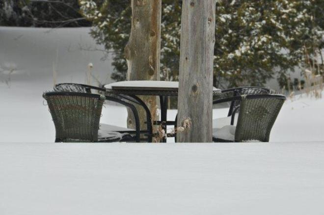 Waiting for Spring Erin, Ontario Canada