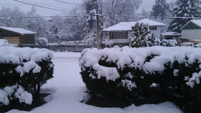 Snow Day Nanaimo, British Columbia Canada
