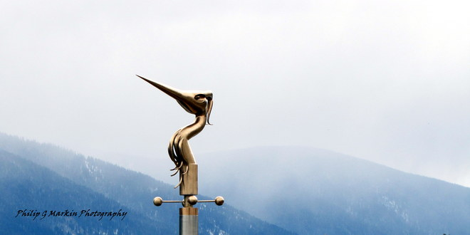 Heron, Storm Moving In Nelson, British Columbia Canada
