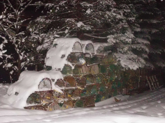 snow covered lobster pots! Bay Bulls, Newfoundland and Labrador Canada