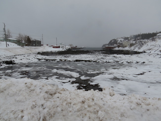 on the go in the snow Rock Harbour, Newfoundland and Labrador Canada