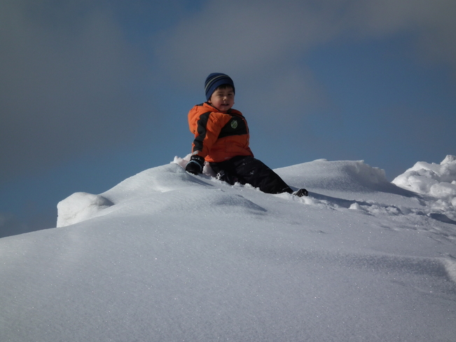 grandson on snowbank Lewisporte, Newfoundland and Labrador Canada