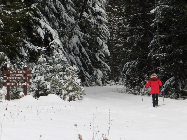 snow shoe at tait creek Fauquier, British Columbia Canada