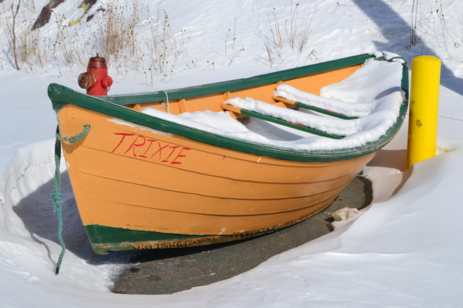 snowy dory Portugal Cove-St. Philip's, Newfoundland and Labrador Canada