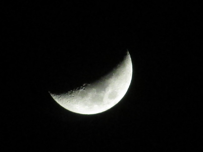 This Evenings Crescent Moon
