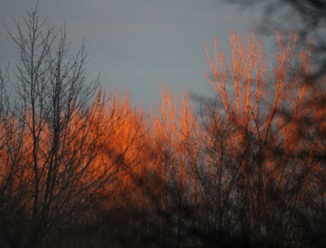 Fiery Sunset Laval, Quebec Canada