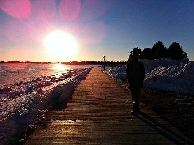 Going for an Evening Walk Charlottetown, Prince Edward Island Canada