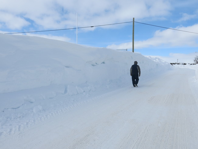 The Wall of snow Buchans, Newfoundland and Labrador Canada