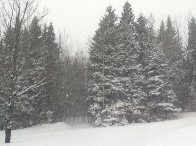 more snow? :( Woodstock, New Brunswick Canada